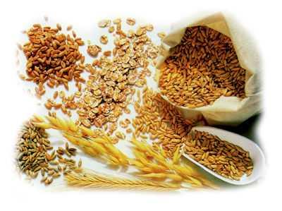 5 Beneficios de integrar la fibra a tu dieta
