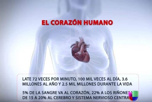 Nutricion-para-enfermedades-cardiovasculares