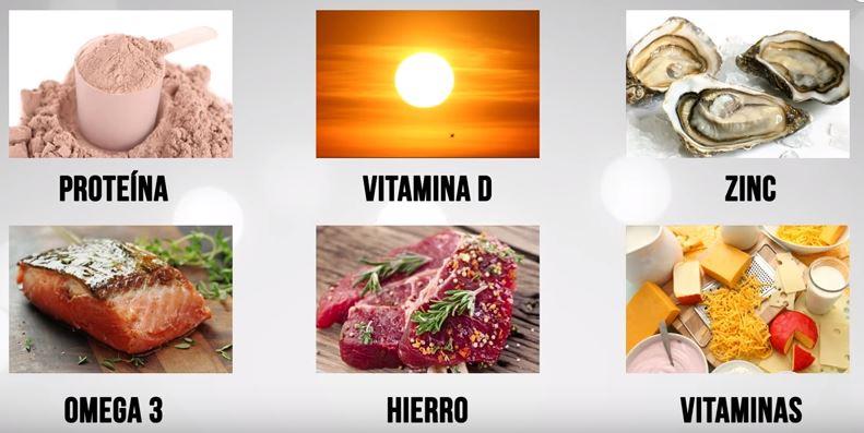 vegetarianos-dieta