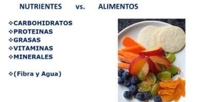 conceptos-de-nutrición-sana