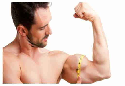 Como lograr volumen muscular